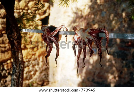 Octopuses drying on the string on a Greek island.