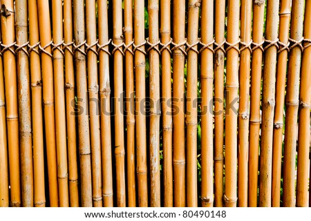 old bamboo texture