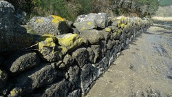 old natural stone wall with yellow moss and sea sand on the ground