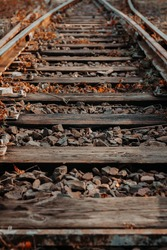Old railroad tracks in the autumn.