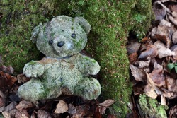 Old toy, abandoned in the forest, overgrown with moss, sits on a tree stump. An unnecessary, forgotten toy in the forest.