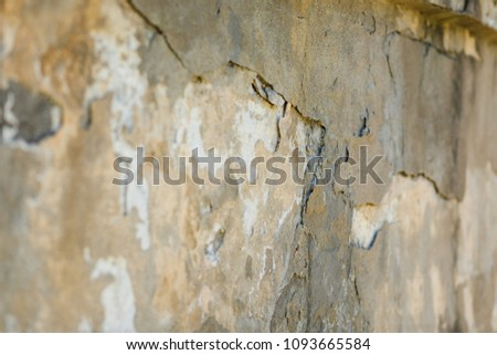 old wall with crickets #1093665584