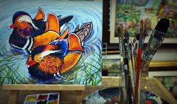 painting Acrylic color Mandarin duck