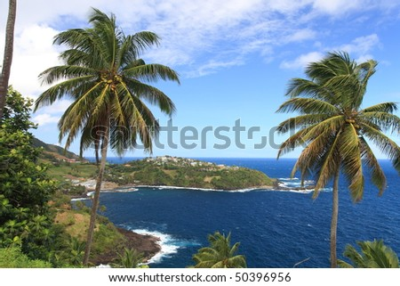 2 palm trres framing picture of St. Vincent in the Caribbean