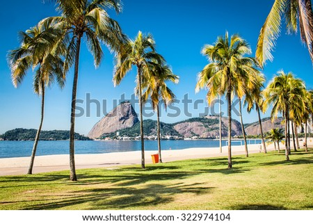 Palms tree on Botafogo beach and Sugarloaf  mountain in Rio de Janeiro, Brazil.