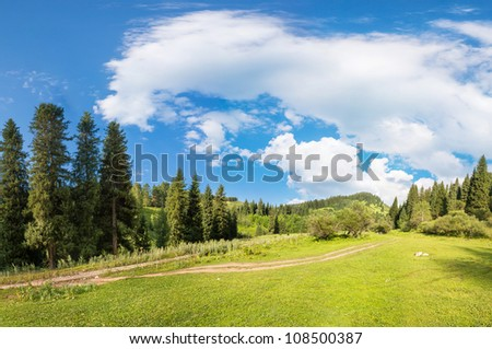 panorama of the forest and sky in the gorge in Almaty, Kazakhstan, Medeo