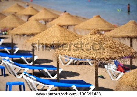parasols and chairs on the beach