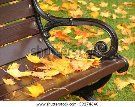 Park grunge bench in autumn close up
