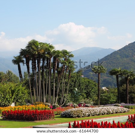 Park Villa Taranto, bright red, yellow and white flowers and palms. Magnificent tranquil landscape.