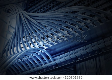 patch panel of the 6th category closeup, blue tone