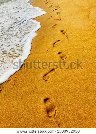 People from all walks of life enjoy their summerin their own way on the beach. Footprints in all sizes, some are small and someare huge, spread over the sand. It is undoubtedly a fantastic place fo