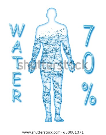 70 percent of a human body is water #658001371