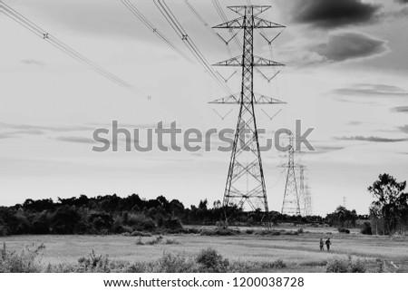 Phone Antenna  black and white #1200038728