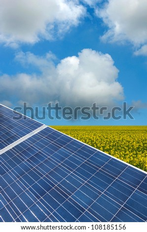 photovoltaic panels in the flowery field