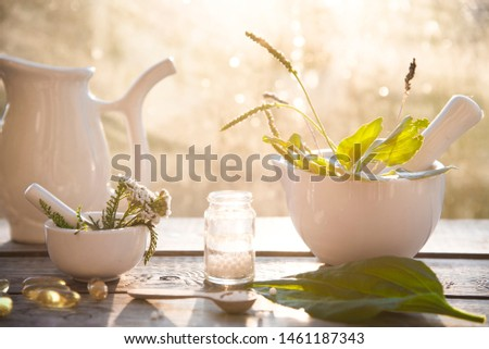 plantain, herbs, homeopathic granules and capsules. alternative medicine. homeopathy and naturopathy