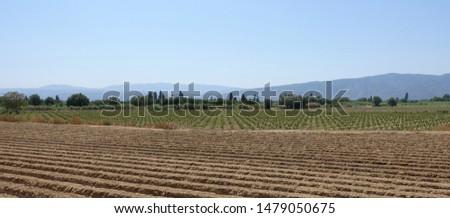 Ploughed field -  farm field