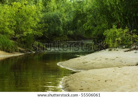 pond, - stock photo