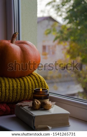 Pumpkin and sweater on the windowsill. Autumn window with a view of the trees. Scented candle on the windowsill.