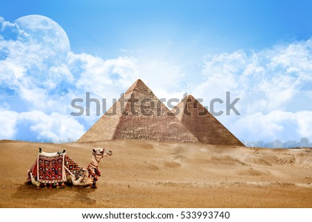 Pyramids Egypt with Camel  #533993740