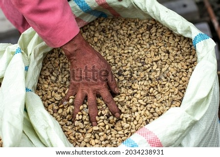 Raw coffee trader's hand with his hand on his wares wrapped in sacks at a traditional market, North Tapanuli-Indonesia.December 4 2015