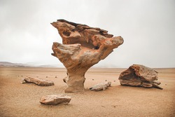 Árbol de Piedra (stone tree) is an isolated rock formation in the Andean National Reserve of Bolivia. It is shaped like a stunted tree because of strong winds carrying sand and eroding the sandstone
