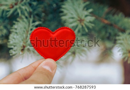 red heart against the background of fir branches. Fir branches. A background of spruce. Background with bright spruce branches. Spruce branches in the drops of rain.  #768287593