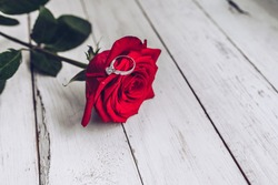 Red rose, marriage proposal, ring, engagement