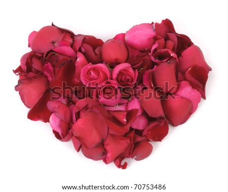3 red roses and petals grouped together as a heart shape on white background