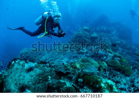 Reef and Marine life in Chumphon Marine National Park, Thailand #667710187