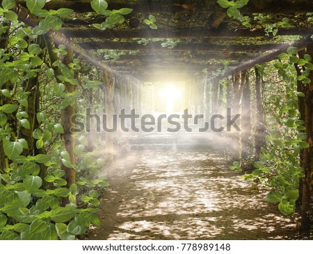 Religion background . Paradise heaven . Light in sky . Way to Go . Cosmic healing energy .  Light at the end of a tunnel  .  Journey of the Soul  . God's cross . Bible