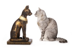 replica of a statue of the Egyptian cat goddess Bastet in front of a real European tabby cat as comparison on studio isolated white background