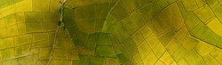 Rice Terrace Aerial Shot. Image of beautiful terrace rice field in Chiang Mai Thailand . Top view landscape.