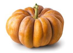 ripe pumpkin on a white background