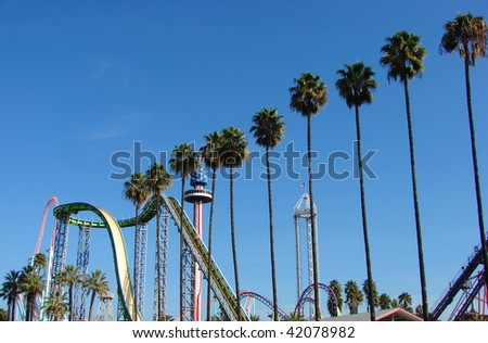 rollercoaster and amusement park rides  with palm trees