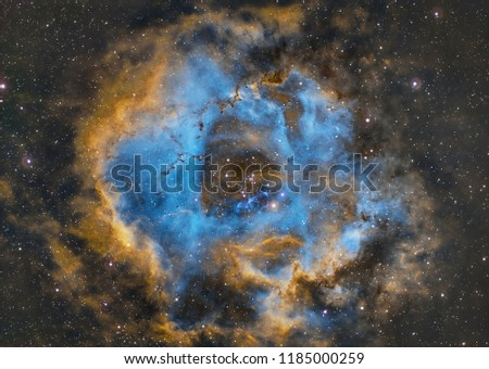 Rose bouquet The Emission Nebula, located about 2,600 light-years from Earth, is about 55 light-years in diameter, twice as large as the Moon. Within the nebula there are many new stars. These stars  #1185000259