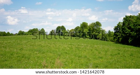 Rural landscape in early summer with gentle hills, blue sky and bright green trees #1421642078