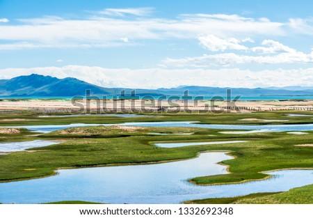 Sanjiangyuan Nature Reserve, the highest elevation natural wetland, Tibet, China #1332692348