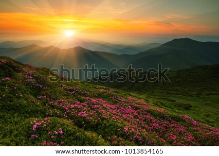 scenic image red spring...
