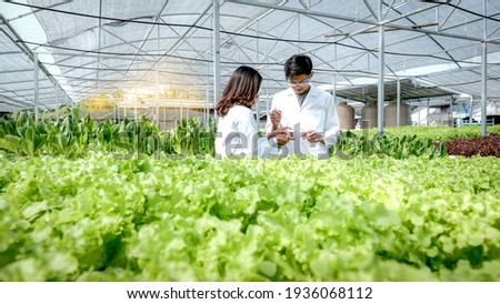 2 Scientists examined the quality of vegetable organic salad and lettuce from the farmer's hydroponic farm. Сток-фото ©