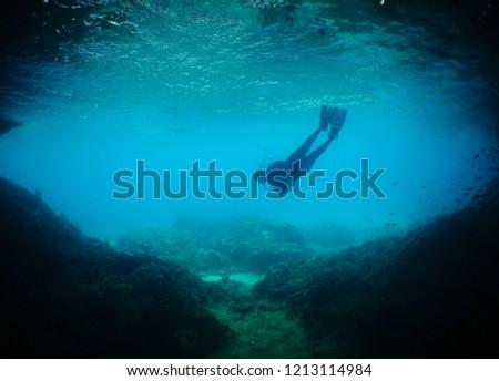 Scuba Dive in Curacao           #1213114984