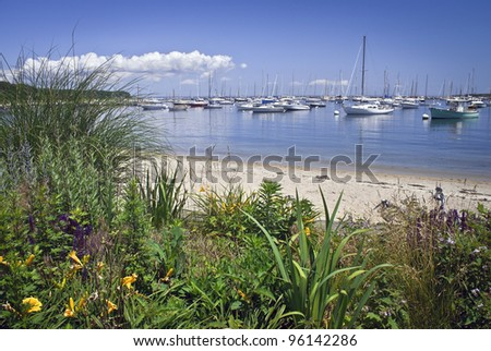 """""""Seaport View Martha's Vineyard"""" A garden view of a marina on Martha's Vineyard on a nice Summer day."""
