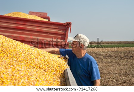 senior farmer  in time harvest