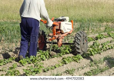 senior gardener , farmer  with rototiller ,  tiller tractor   #494702083
