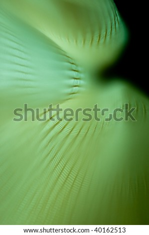 [series] abstract green fabric background, shallow DOF