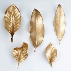 set of gold leaves. Christmas decoration. gold leaf.