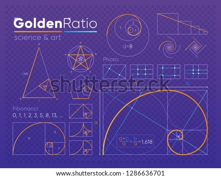 set of various figures and shapes in law of golden ratio composed on purple transparent background