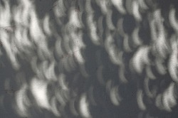 Shadow of solar eclipse on concrete wall, solar eclipse shape spots of sunlight on the wall during a partial eclipse of the sun lighting through tree branch shadow