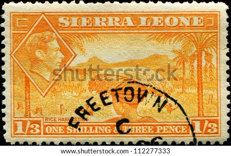 SIERRA LEONE - CIRCA 1940: A  stamp printed in Sierra Leone shows native of country rice harvesting and inset of King George VI, circa 1940
