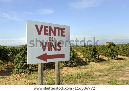 """Sign at a vineyard with the french text ""Vente vins""that means sale of wine"