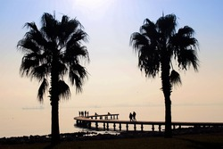 Silhouette of pier and palm in the sea
